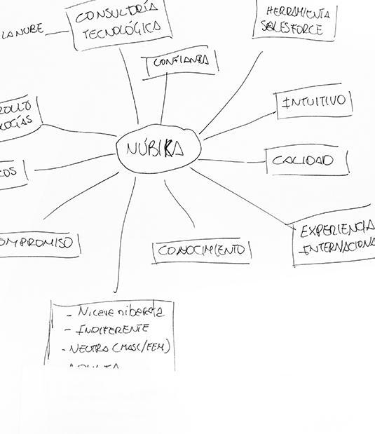 Información necesaria para desarrollar nuestro proyecto de branding y diseño web