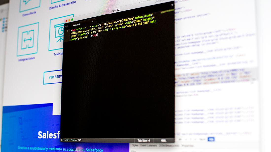 Nubika: Elementos digitales - Programación web